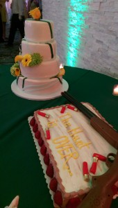 Wedding Cake highlighted by green uplighting